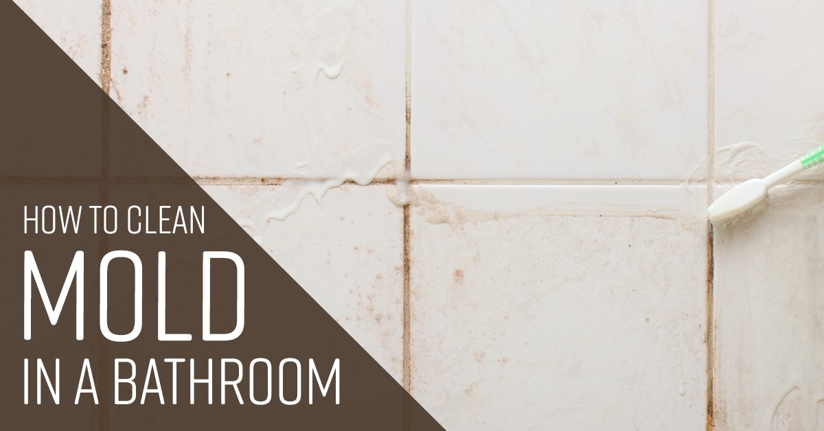 How To Clean Mold In A Bathroom Simple Green