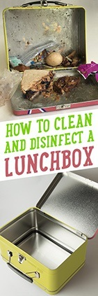 How to Clean & Disinfect Lunchboxes