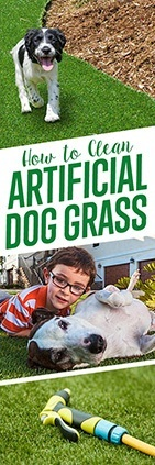 How To Clean Artificial Dog Grass